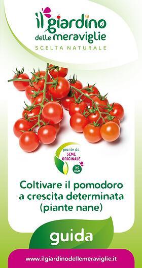 Coltivare il pomodoro a crescita determinata (piante nane)