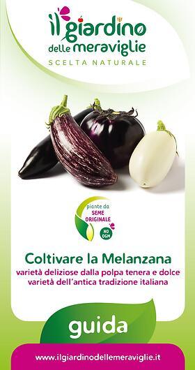 Coltivare la Melanzana varietà deliziose dalla polpa tenera e dolce varietà dell'antica tradizione italiana