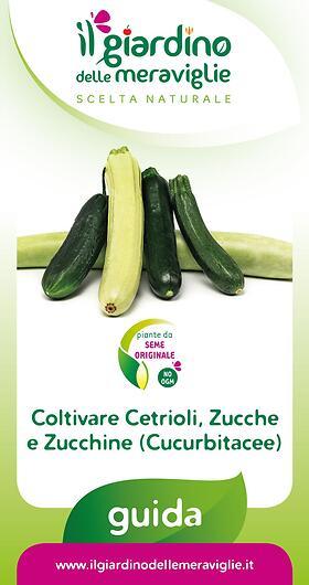 Coltivare Cetrioli, Zucche e Zucchine (Cucurbitacee)