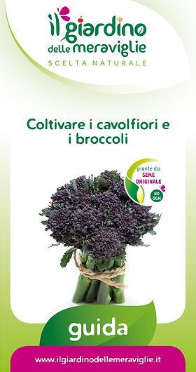 Coltivare i cavolfiori e i broccoli