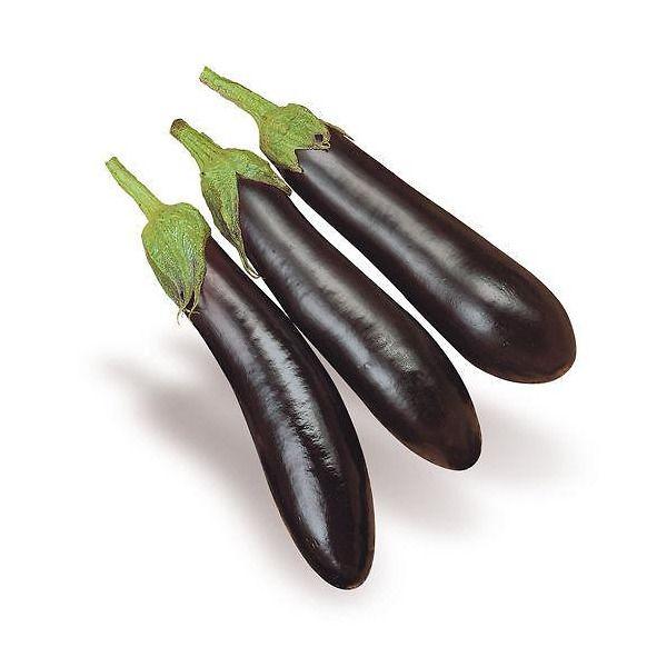 melanzana nera mezza lunga