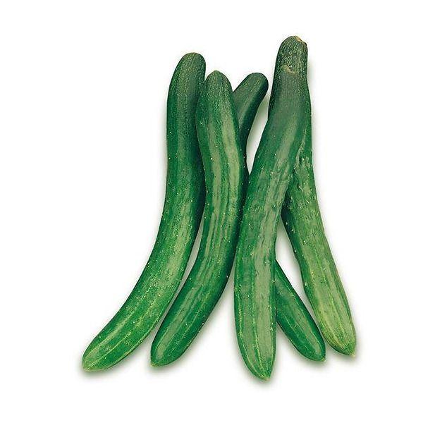 Cetriolo lungo Burpless Tasty Green