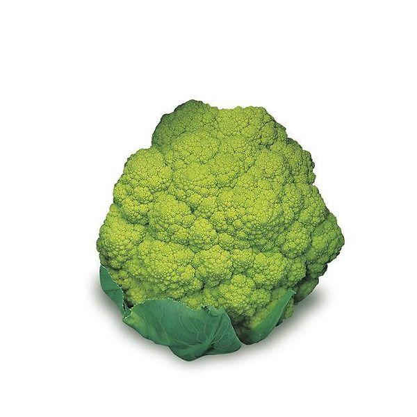 Cavolfiore verde magnifico 130-140 giorni
