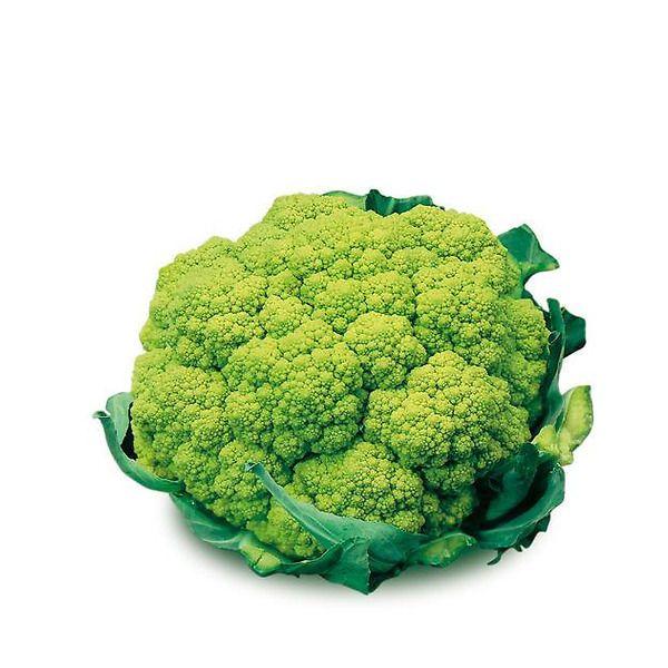Cavolfiore verde ibrido eco 100-110 giorni