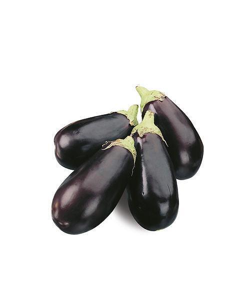 melanzana ovale nera