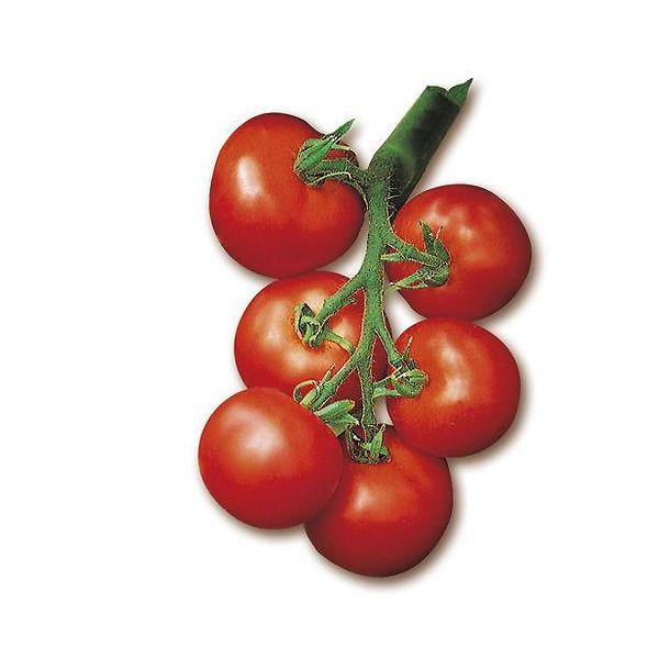 Pomodoro tondo liscio a grappolo 120-140 gr.