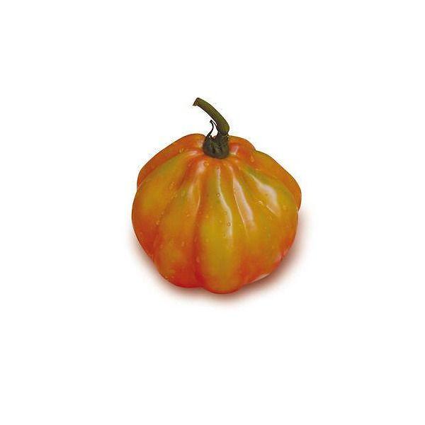 Pomodoro Cuore di Bue sel. d'Albenga