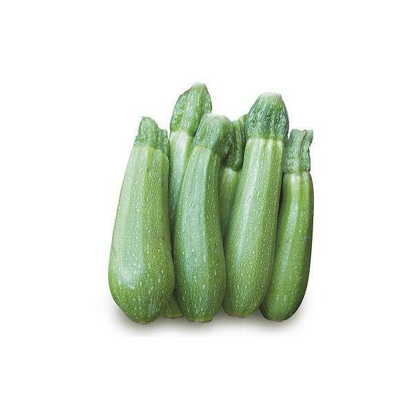 Zucchino Clarita