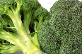 Cavoli, Broccoli, Verze