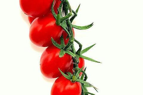 pomodoro ciliegino • frutto