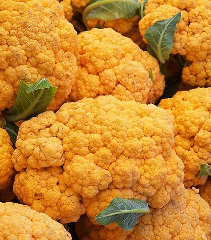 Cavolfiore arancione 80-85 giorni
