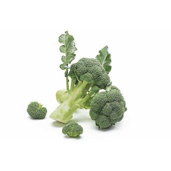 Cavolo broccolo green belt 75-85 giorni
