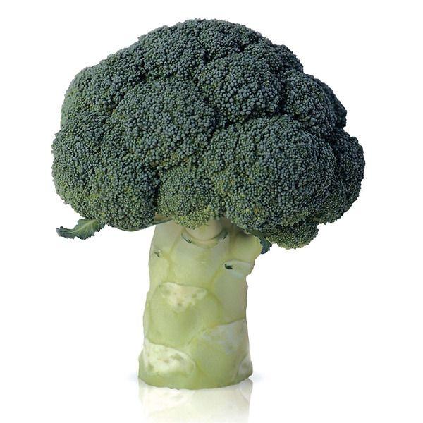 Cavolo broccolo tip. Marathon