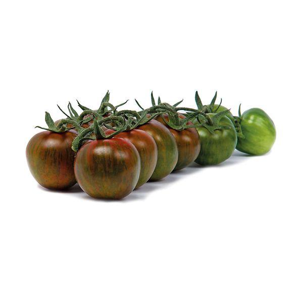 Pomodoro zebrino innestato