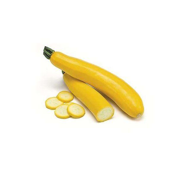 Zucchino giallo