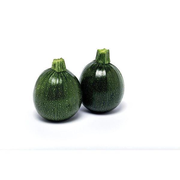 Zucchino rotondo verde scuro