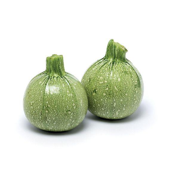 Zucchino tondo verde