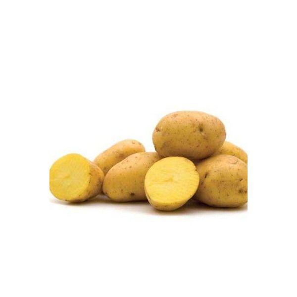 Patata gialla