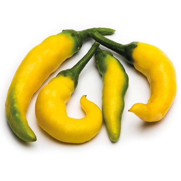 Peperoncino piccante Paprika giallo