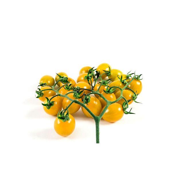 Pomodoro ciliegino giallo innestato