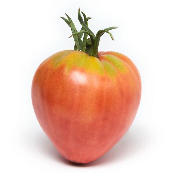 Pomodoro Cuore di bue classico