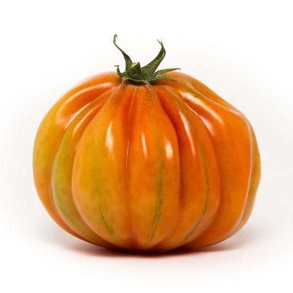pomodoro tarquito il giardino delle meraviglie
