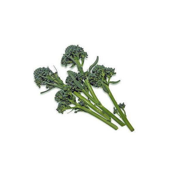 Broccoletto a getti Sparacello palermitano ibrido