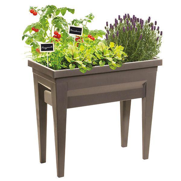 Kit Completo Tavolo di Coltivazione piante
